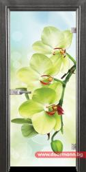 Стъклена врата модел Print 13-3 - Сив кестен